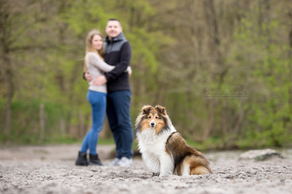 Motividee Pärchen und Hund