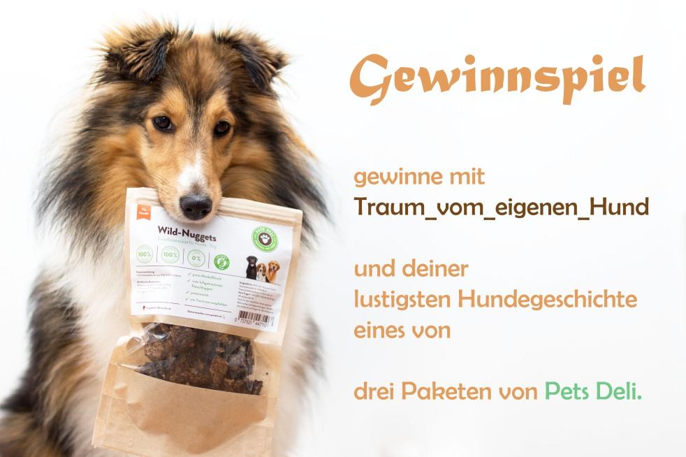 Gewinnspiel Traum vom eigenen Hund und Pets Deli