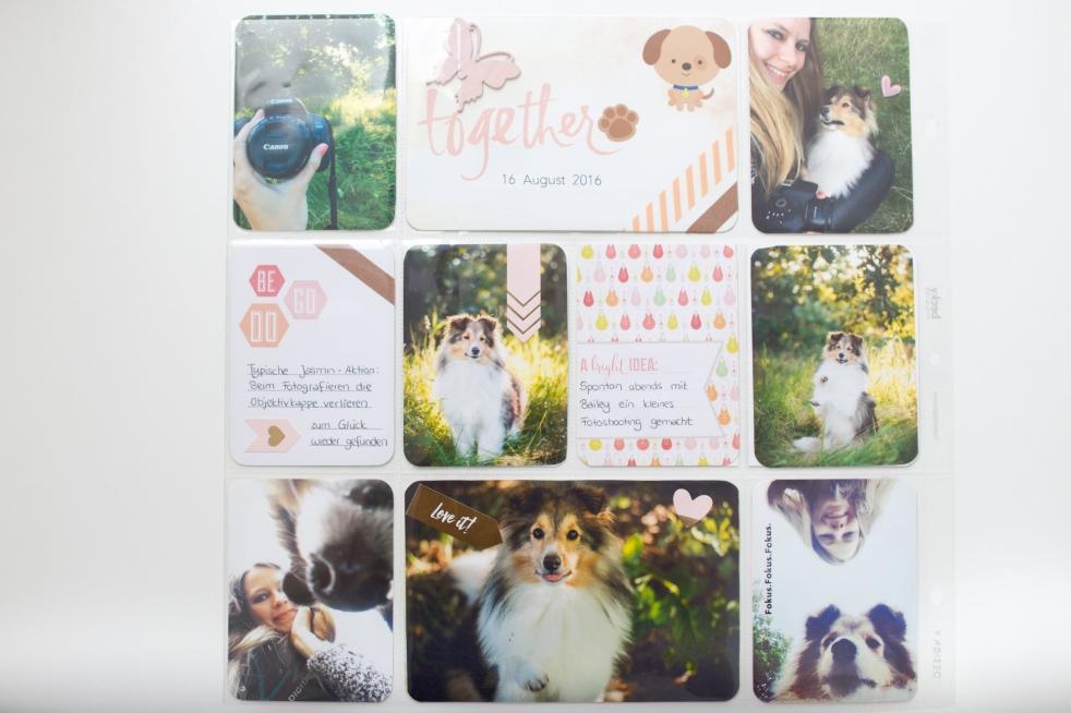 Project Life mit Hunde Karten und Hunde Stickern