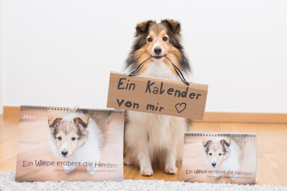 Hunde Welpenkalender für das Jahr 2017