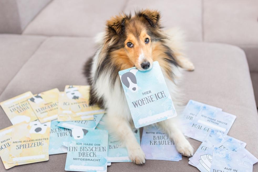 Geschenkidee für Hundebesitzer