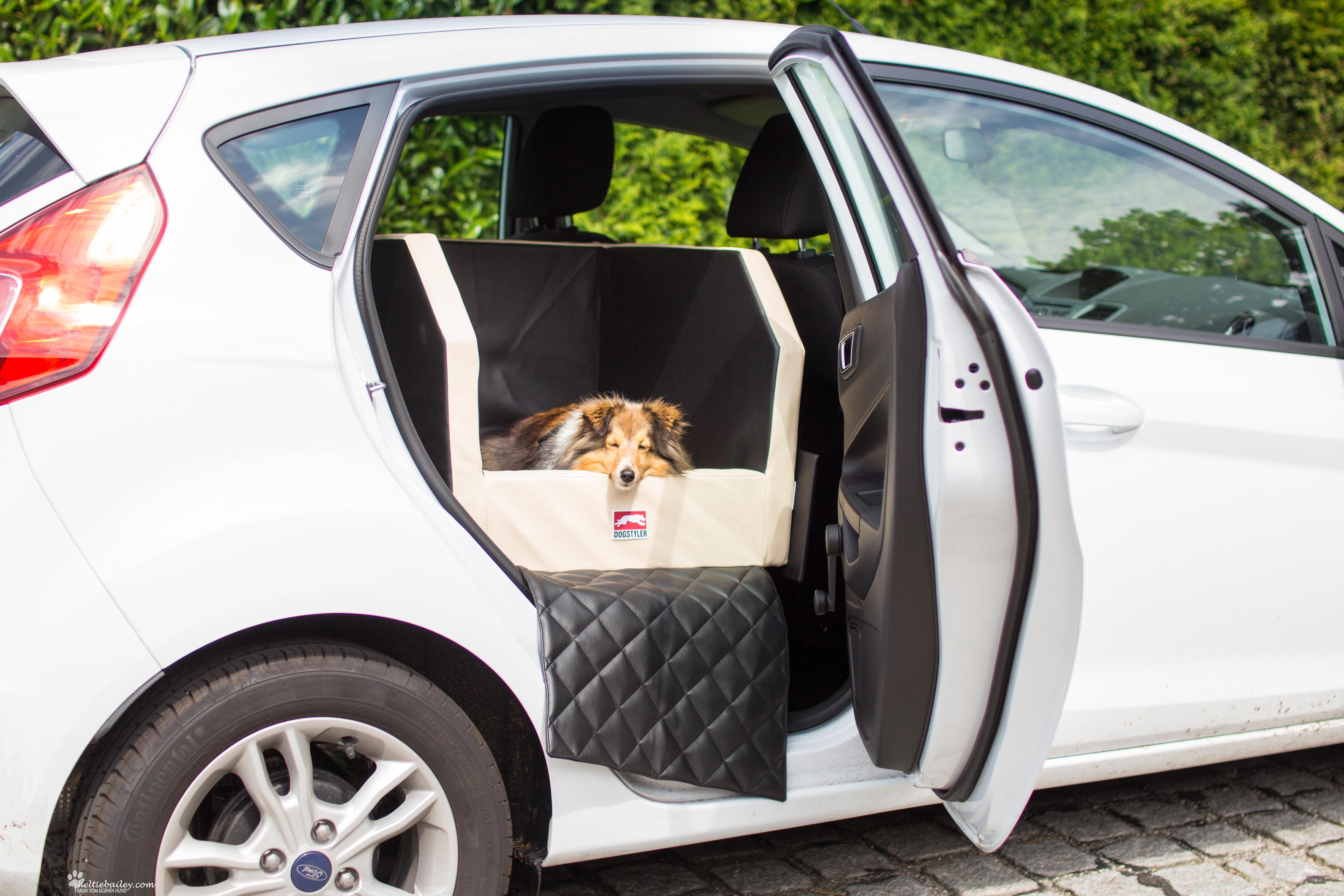 dogstyler kofferraum