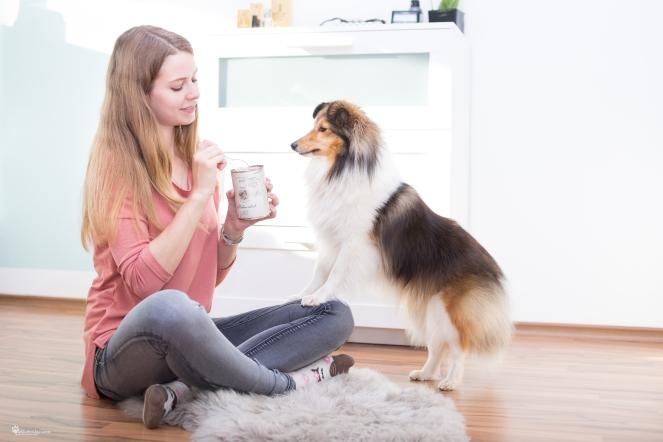 Was für gute Dosen gibt es für Hunde