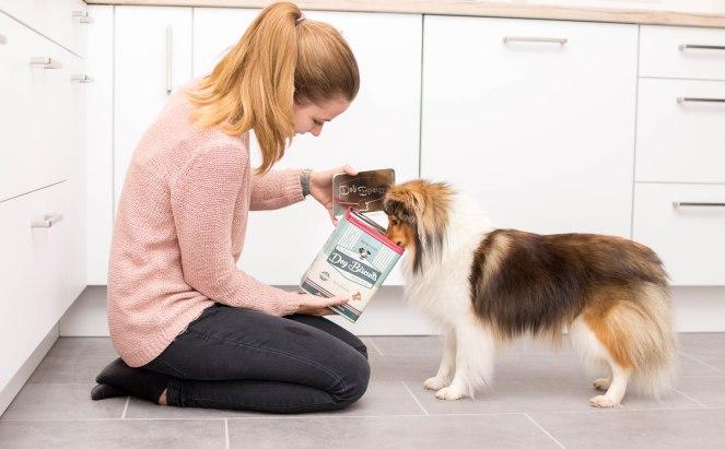 Keksdose für Hunde