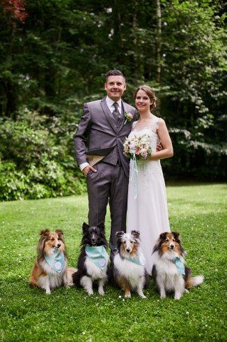 Hochzeit mit Hund Sheltie